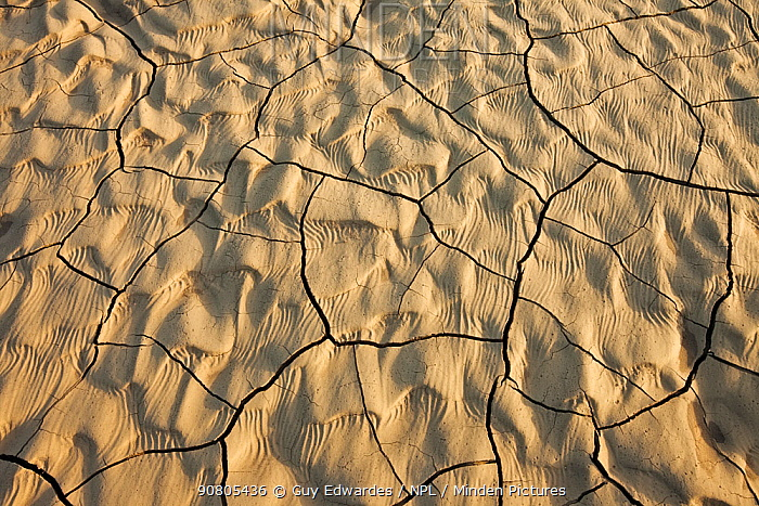 Cracked earth in dry riverbed, Landmannalaugar, Iceland.
