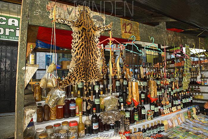 Belen Market, with Ocelot pelt for sale, Iquitos, Peru. July 2014