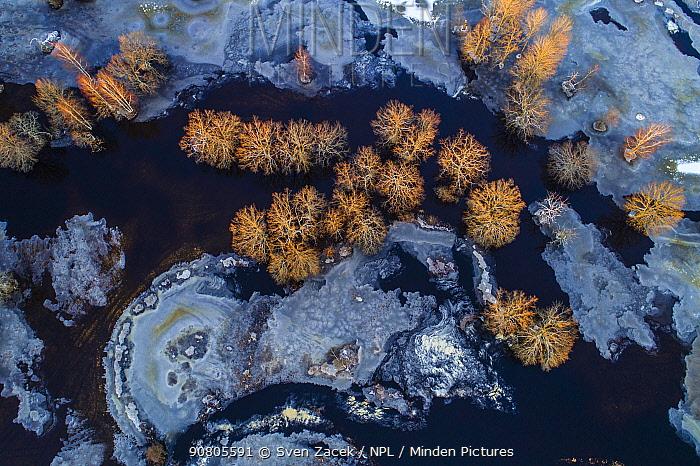 Flooded and frozen Halliste River. Soomaa National Park, Parnumaa, Western Estonia. December 2017.