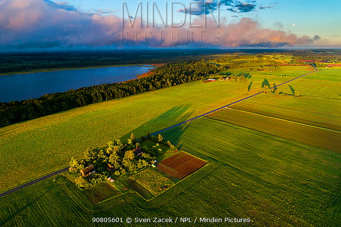Fields within the Vooremaa Landscape Protection Area in evening light, aerial view. Tartumaa, Southern Estonia. June 2017.