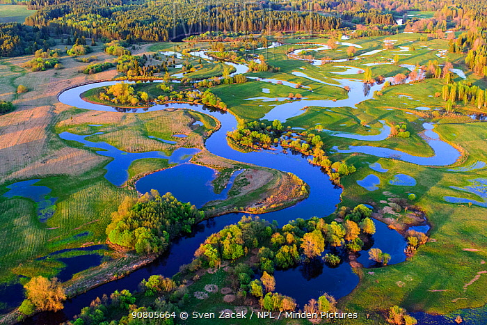 Spring flooding of Mustjogi River and surrounding meadows, aerial view in evening light. Border of Estonia and Latvia. May 2016.