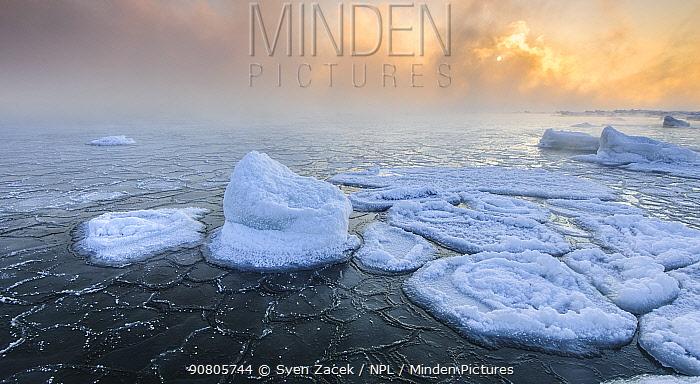Frozen Baltic Sea at sunrise, Lahemaa National Park, Harjumaa, Northern Estonia. February 2012.