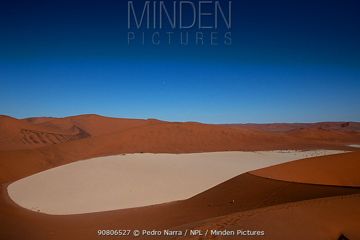 Sand dunes of Sossusvlei World Heritage Site, Namib-Naukluft National Park, Namibia