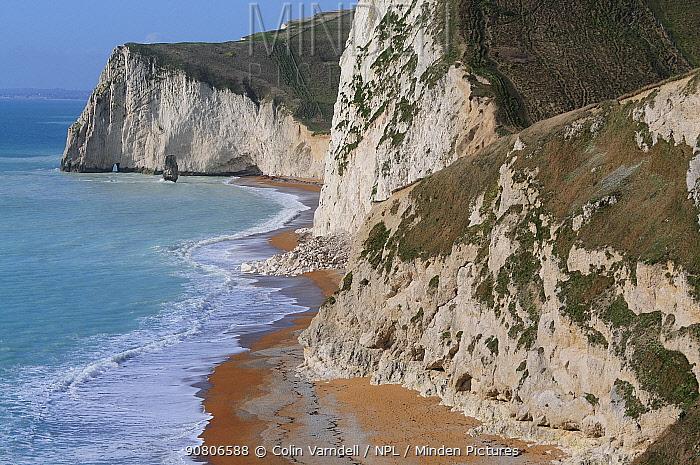 Chal cliffs and beach at Bat's Head, east Dorset Jurassic Coast, Dorset, England, UK. February 2013