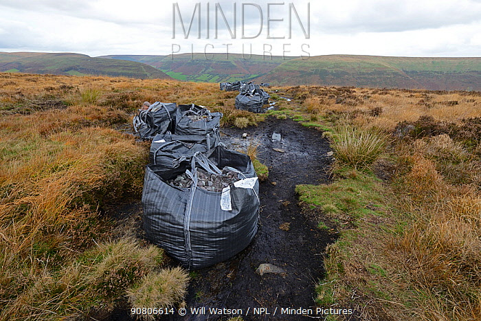 Path and moorland restoration with bags of stone dropped by heliicopter, Bwlch Bach, Brecon Beacons National Park, Breconshire, Wales, October 2018.
