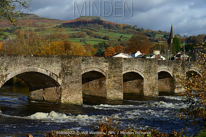 Crickhowell Bridge rebuilt in 1706 and the River Usk in spate and Table Mountain in the background, Brecon Beacon National Park, Breconshire, Wales, November 2018.