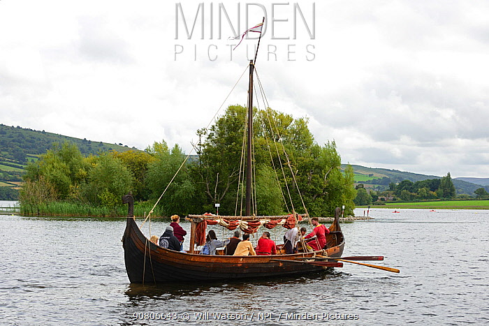 Replica Viking longboat on Llangorse Lake and the Crannog, a 9th Century man-made island, Brecon Beacons National Park, Breconshire, Wales, September 2018.