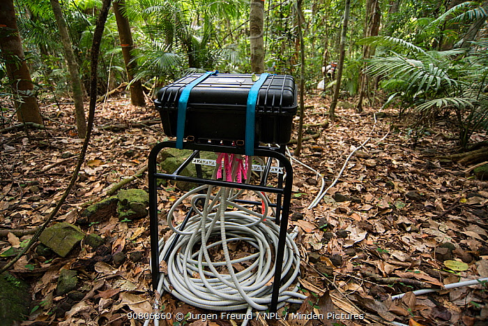 Scientific instruments to measure many elements related to rainforest treess including carbon dioxide exhaled, tree's water intake and flow, and growth rate.Daintree rainforest observatory, Queensland, Australia. February 2015