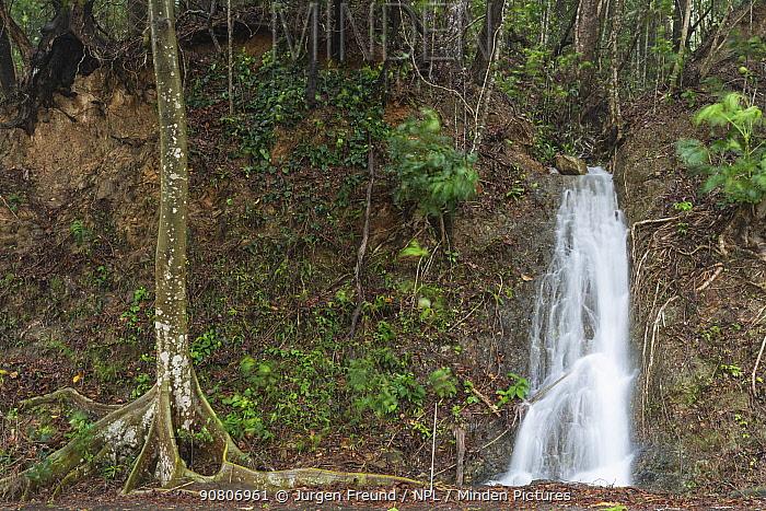 Creek / Stream in spate due to heavy rainfall, Daintree rainforest, Queensland, Australia. December 2015
