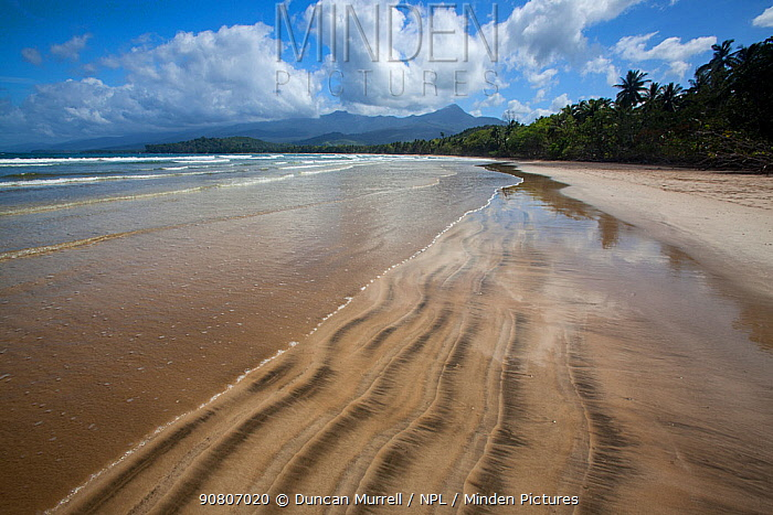 Long deserted beach at Napsan on the west coast of Palawan, Puerto Princesa, the Philippines. Medium repro only