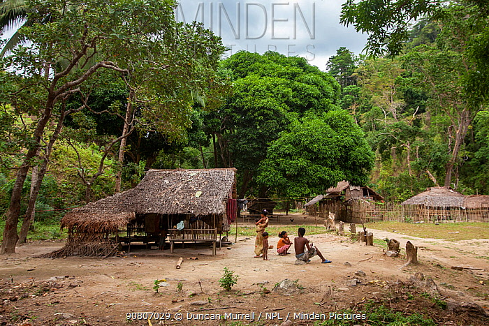 The Batak indigenous village in the forest, Sitio Kalakwasan in Cleopatra's Needle Critical Habitat, Palawan, the Philippines.