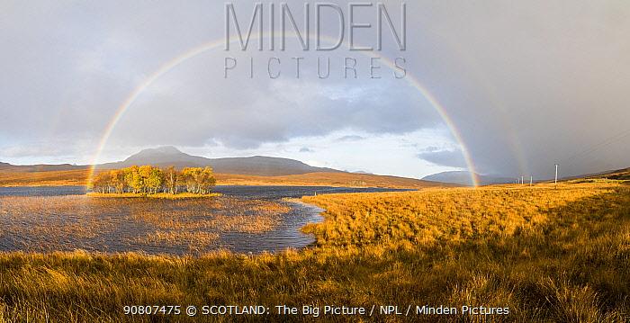 Double rainbow emmerging from rain shower over Loch Awe, Assynt, Scotland, UK, November 2016.