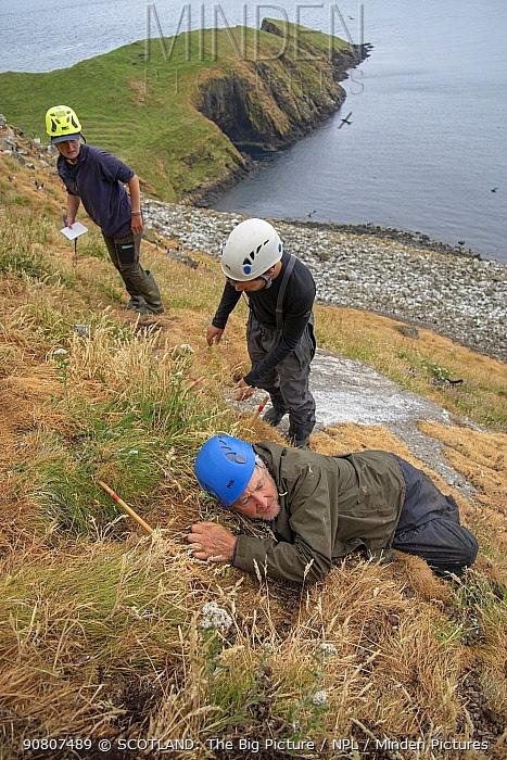 RSPB biologists surveying seabirds, Shiant Isles, Outer Hebrides, Scotland, UK. July, 2018.