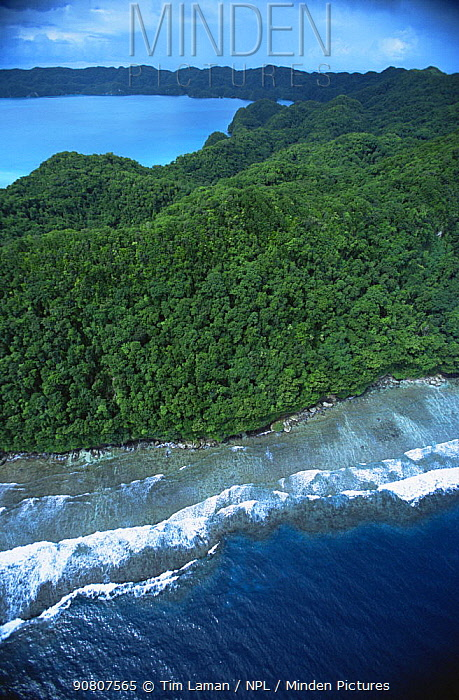 Aerial view of limestone uplifted islands in Palau, Micronesia, December 2001.