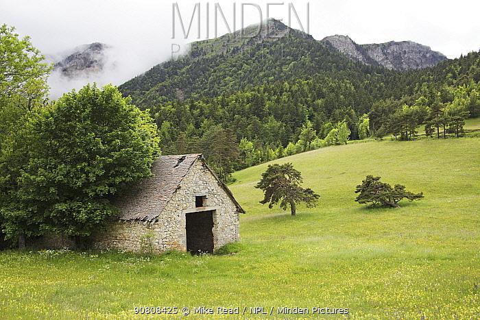Wildflower meadow and mountain hut near the Col du Prayer, Parc Naturel Regional du Vercors, France, June 2012.