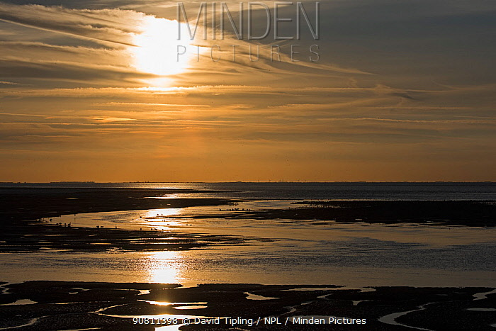 Autumn sunset over the Wash at Snettisham as tide comes in. Norfolk, England, UK. September 2015.