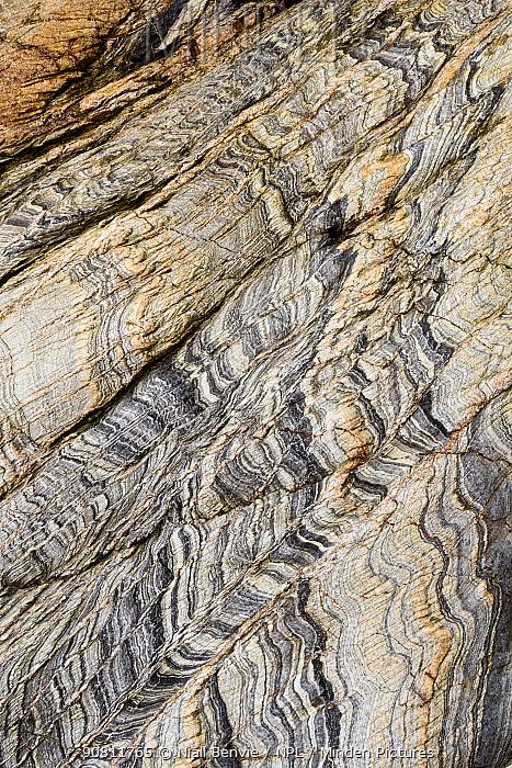 Slate from Kintra, Islay, Scotland