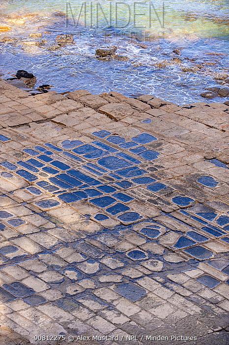 Waves lap up against a tessellated pavement. Eagle Hawk Neck, Tasmania, Australia. Tasman Sea