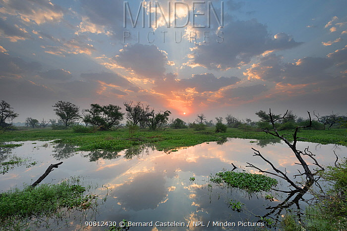 Sunrise over wetlands in , Keoladeo NP, Bharatpur, India