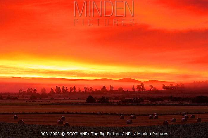 Red dawn sky over farmland, Strathspey, Scotland, UK, October 2017.