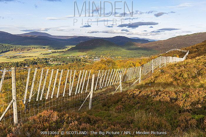 Deer fence on moorland above Morrone birkwoods, Scotland, UK, October.