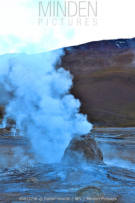 Geysers and fumaroles, El Tatio geyser field, 4320m above sea level, Andes Mountains, northern Chile.