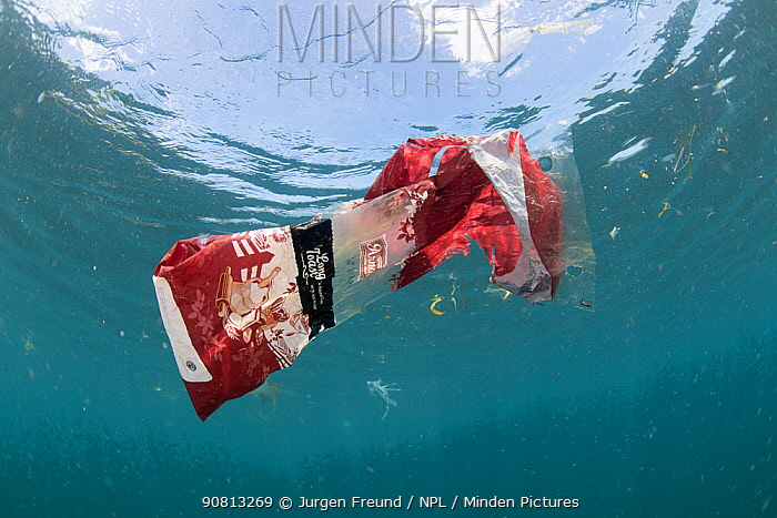 Discarded plastic food packaging floating in the sea, Sulawesi, Indonesia, November 2018