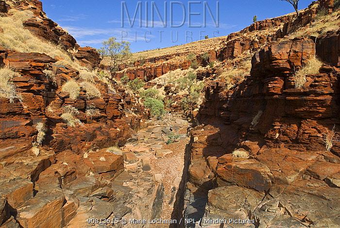 George Gorge, Millstream Chichester National Park, north west Pilbara, Western Australia, May 2010