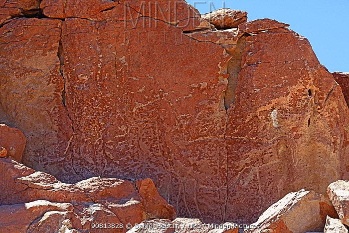 Yerbas Buenas Petroglyph, drawn by the Atacama people approximately 10,000 years ago., Atacama, Chile.