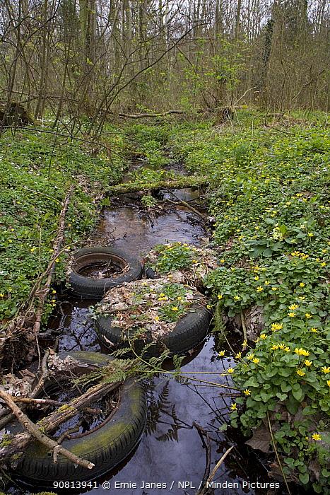 Tyres dumped in woodland stream, Norfolk, England, UK. April 2007.