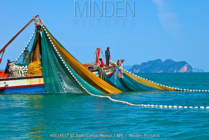 Fishing on the Krabi coast. Krabi province, Andaman Sea, Thailand,