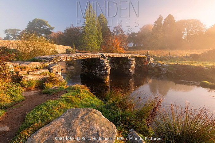 Clapper Bridge at Postbridge, early morning light and mist, Dartmoor National Park, Devon, UK. October 2018.