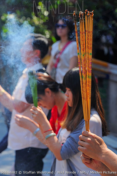 Incense burning ceremony at the Yonghe Temple, 'Palace of Peace and Harmony', a Tibetan Lamaistic Buddhist shrine, Beijing, China, May 2012