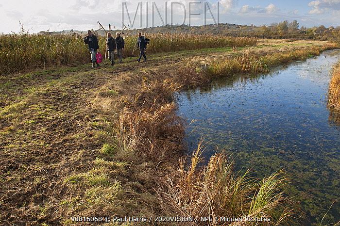 Volunteer work party walking alongside drainage ditch, Vange Marshes RSPB reserve, Essex, England, UK, November. Model released.
