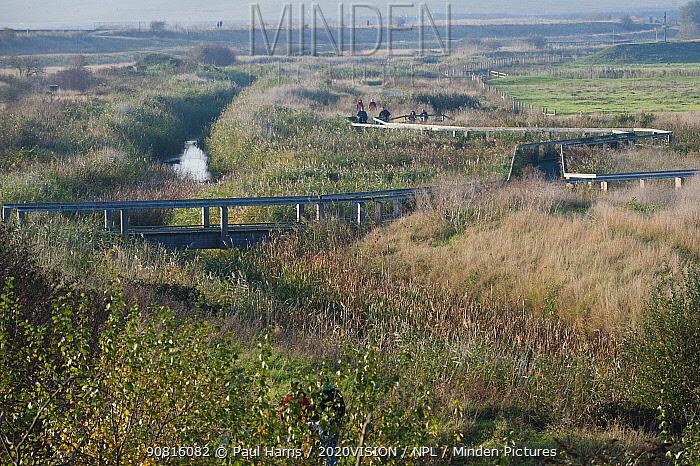 Landscape view of Rainham Marshes RSPB reserve, Essex, England, UK, November