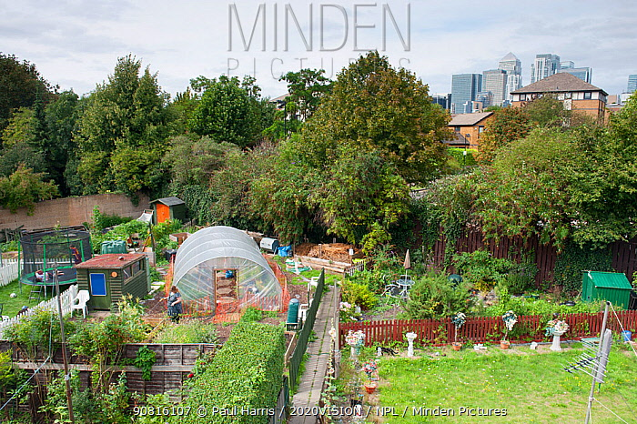View over community garden at Thermoplyae Gate, London, England, UK, August