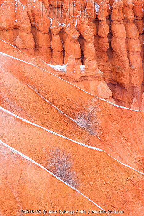 Silent City section, with ridges lined with new fallen snow creating a diagonal. Bryce Canyon National Park, USA, January.