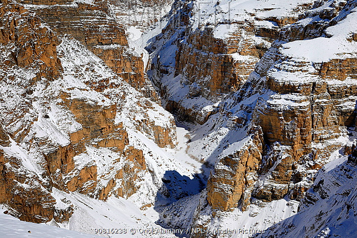 Cliffs with snow in Badam canyon near Kibber in Spiti Valley, Cold Desert Biosphere Reserve, Himalaya, Himachal Pradesh, India, March