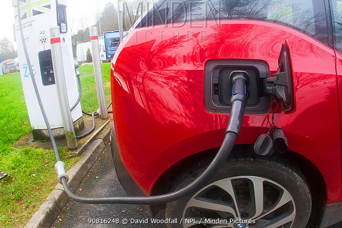 Electric car charging at motorway service station.