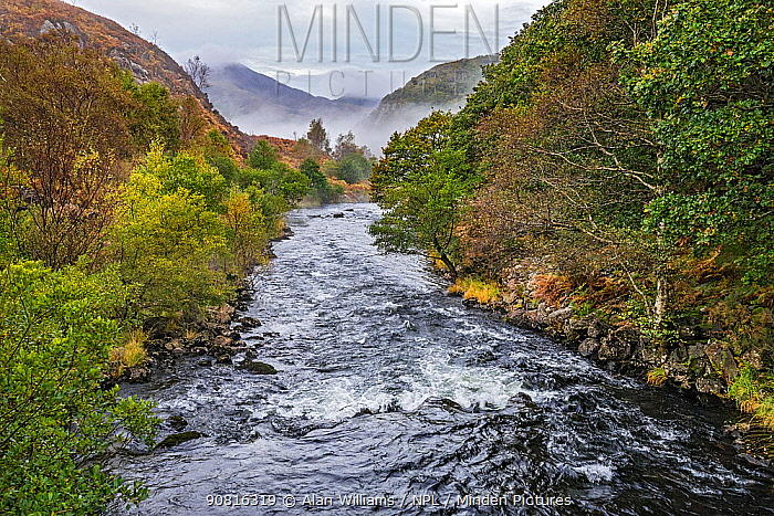 River Glaslyn looking west along the Gwynant valley towards Moel Hebog on a misty morning near, Beddgelert Snowdonia National Park, North Wales, UK, October 2018.