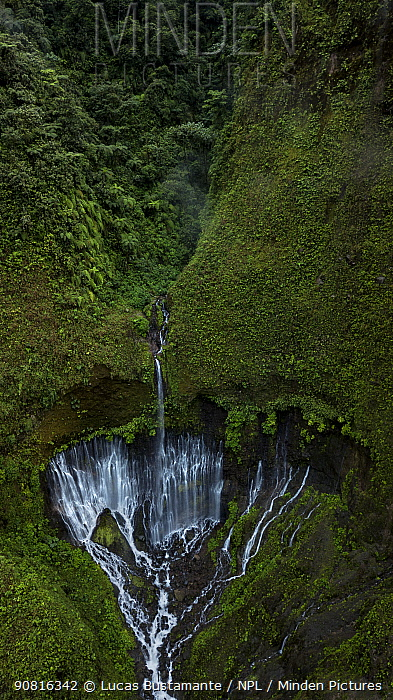 Forest and waterfall. San Rafael, Napo, Ecuador