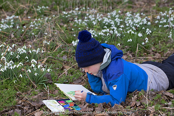 Boy painting snowdrops, Suffolk, England, UK, 2019. Model released.