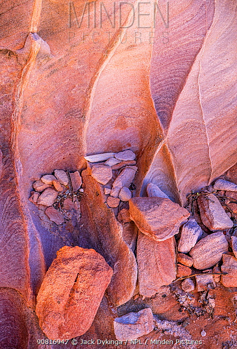 Patterns in sandstone with cross bedding and flaking in canyon walls. Valley of Fire State Park, Great Basin Desert, Nevada, USA, February.