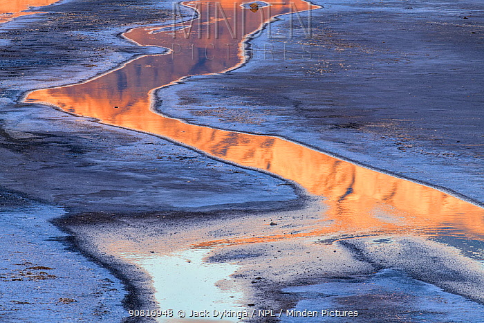 Cottonball Basin salt flats with rivulets reflecting dawn light on the Panamint Range the forms the west side of the valley. Death Valley National Park, Mojave Desert, California, USA, March.