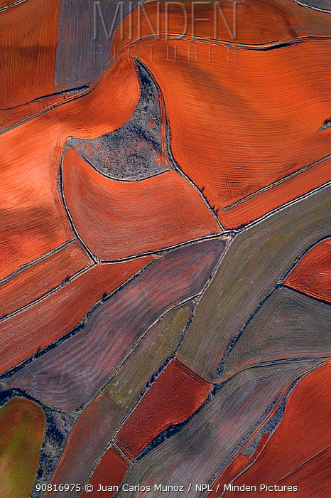 Aerial view of agricultural landscape, Montana Palentina, Castille and Leon, Spain, January 2019