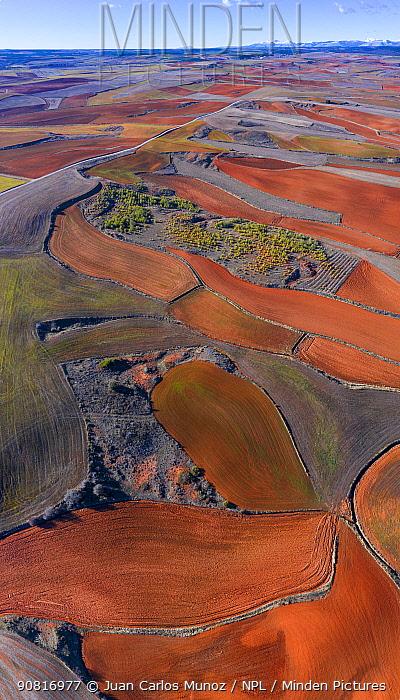 Agricultural landscape, Montana Palentina, Castille and Leon, Spain.