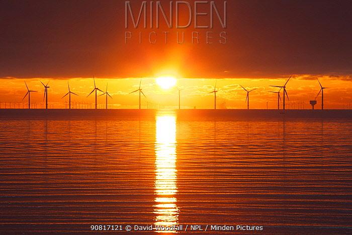 Sunrise over offshore wind turbine farm, Essex, England, UK, December.