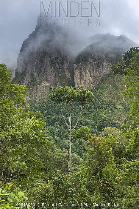 Mountain cliffs seen from Camp Marojejia, Marojejy NP, Madagascar