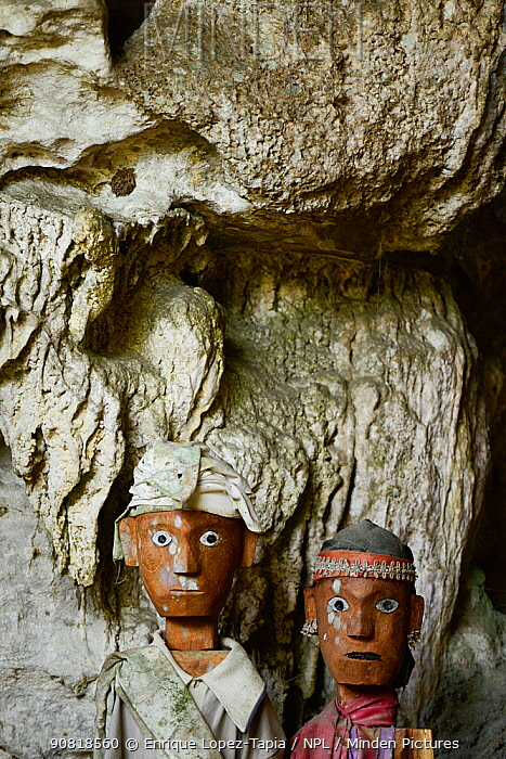 Tau tau, effigies of the dead carved in wood. Cemetery in Tana Toraja. Toraja ethnic group of West and South Sulawesi. Indonesia. 2015.