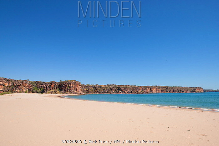 Sandy beach with coastal cliffs in background. Tranquil Bay and Koolama Bay, The Kimberley, Western Australia. 2015.